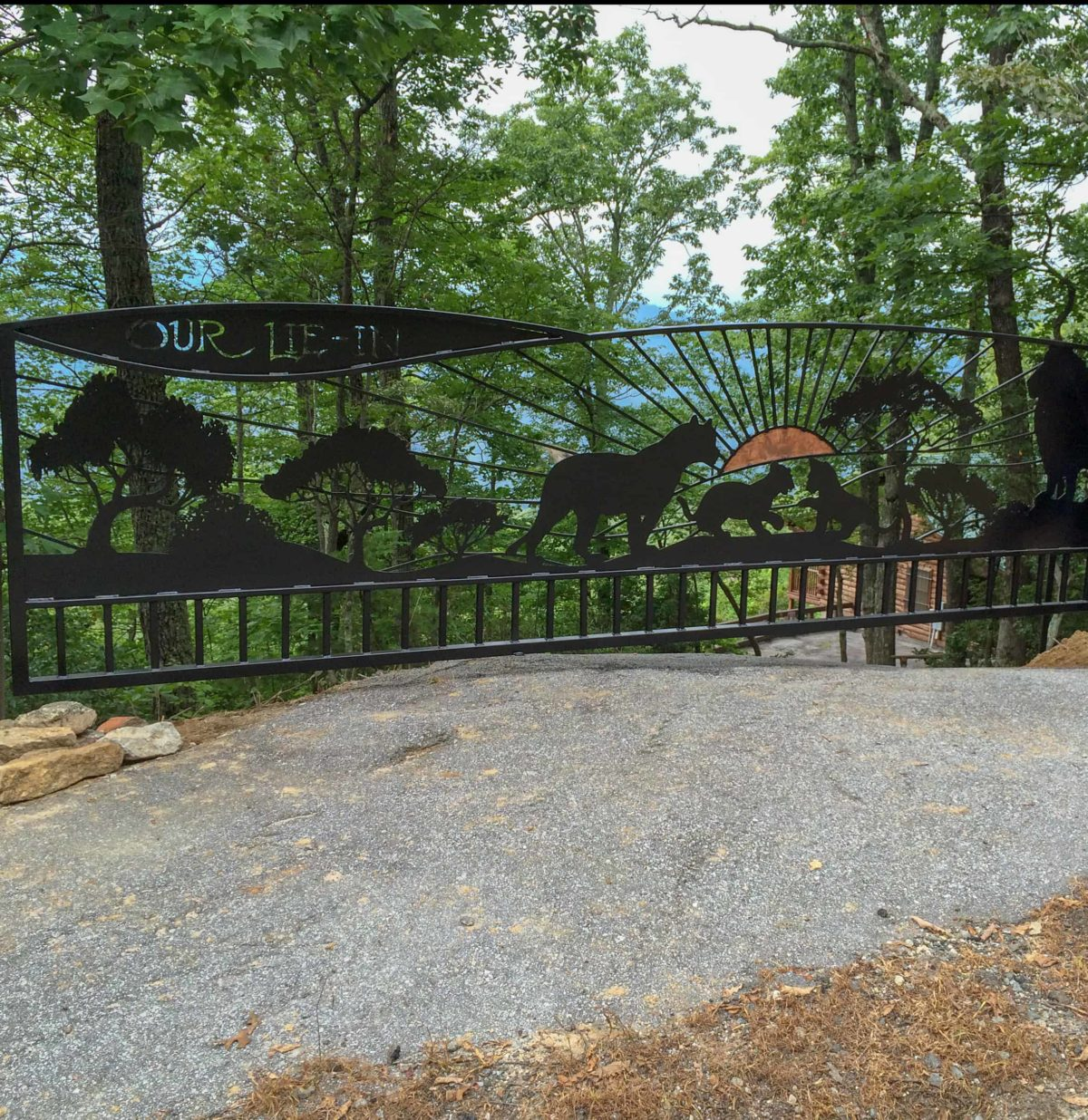 Metal gate designed for custome in Lake Lure, North Carolina.